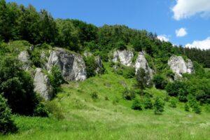 Grupa Szarej Płyty w Dolinie Kobylańskiej