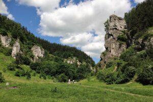 Dolinka Kobylańska i Żabi Koń